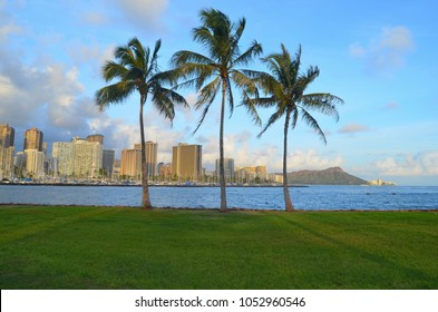 Palm trees in the background of Honolulu and the Diamond Head, sunset in Honolulu on Oahu, Honolulu, Oahu, Hawaii,