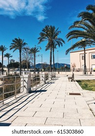 Palm trees and beautiful sunny day in city center of Olbia, Sardinia, Italy
