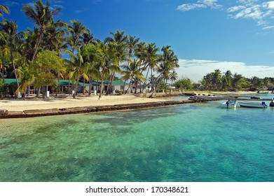 Palm trees and beautiful turquoise clear water of tropical coast, Union Island