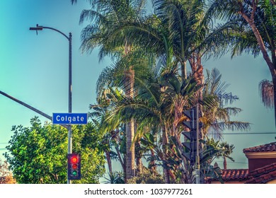 Palm trees in Colgate avenue, Beverly Grove. Los Angeles, California
