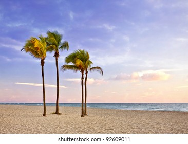 Palm trees  and Colorful landscape of sunrise at Tropical summer paradise in Miami Beach Florida and Atlantic ocean in the background , with pristine sands and cloudy sky