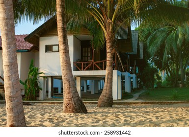 Palm trees and cottages