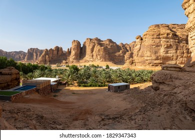 Palm trees at a date plantation in Al Ula, western Saudi Arabia