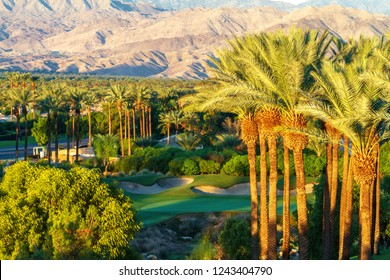 Palm trees with golf course and mountain range in the Coachella Valley