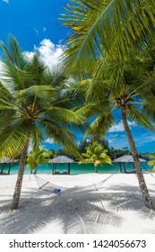 Palm trees and hammock on a tropical sunny beach, islands of Vanuatu