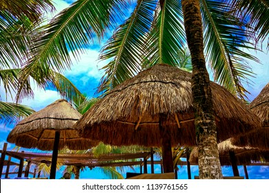 Palm trees and huts at a beach in Costa Maya, Mexico