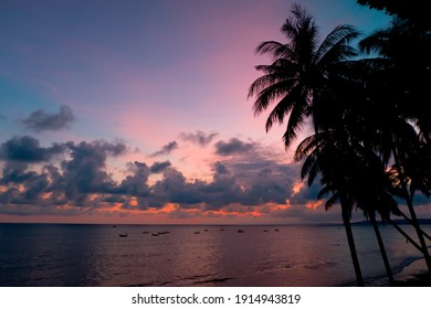 Palm trees lean towards the sea at sunset.