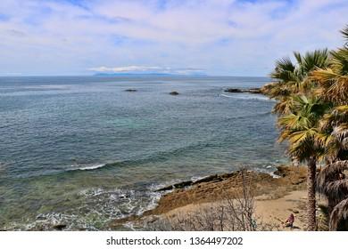 Palm trees look down on a sandy beach near the ocean