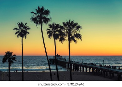 Palm trees at Manhattan Beach. Vintage processed. Fashion travel and tropical beach concept.