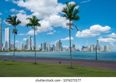palm trees, ocean and skyscraper skyline of Panama City