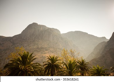 palm trees on a background of mountains in the evening, beautiful landscape of the warm region.