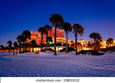 Palm trees on the beach at night in Clearwater Beach, Florida.