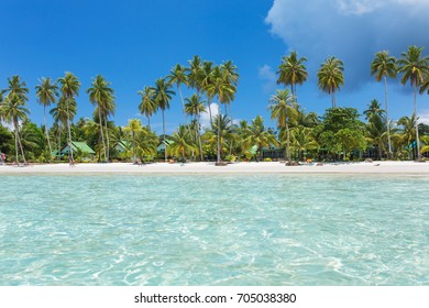 Palm trees on beautiful tropical beach on Koh Kood island in Thailand