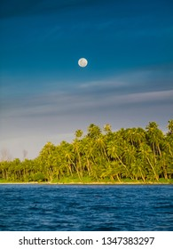 Palm trees on the edge of a tropical island with full moon, Telo Islands, Indonesia.
