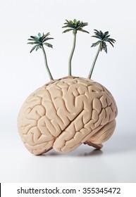 palm trees on a human brain model