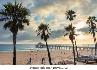 Palm trees on Manhattan beach and pier at sunset, Los Angeles, California.