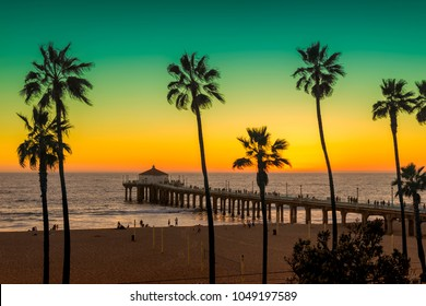 Palm trees on Manhattan Beach and pier at sunset in Los Angeles, California. Vintage processed. Fashion travel and tropical beach concept.