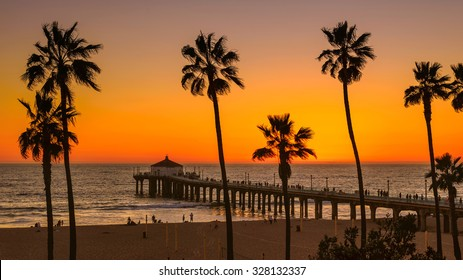 Palm trees on Manhattan Beach at sunset, Los Angeles