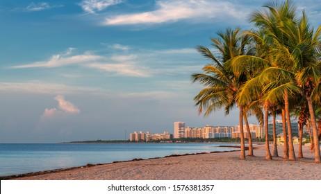 Palm trees on Miami Beach at sunrise, Florida.