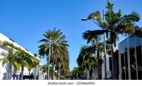 Palm trees on the parkway of Rodeo Drive in Beverly Hills in Los Angeles, blue sky, shopping mile