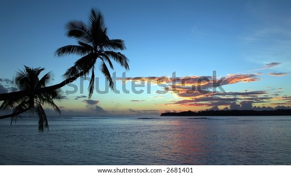 Palm trees over water at sunset