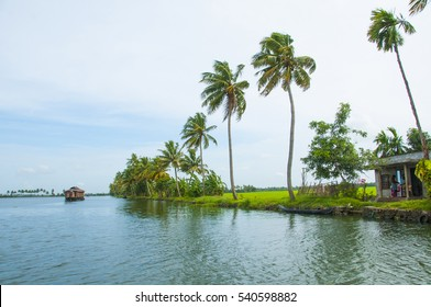Palm trees reflection on the backwater of Kerala, India. beautiful landscape backwaters of Kerala, Backwaters is one of the main tourist attractions of Kerala.