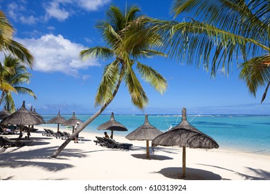 Palm trees  and sany beach on tropical paradise island of Mauritius