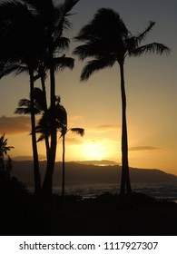 Palm trees silhouetted by the setting sun against a golden sky at Haleiwa Alii Beach Park on the North Shore of Oahu, Hawaii