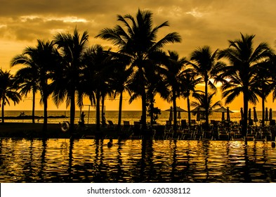Palm trees silhouettes on tropical beach at summer