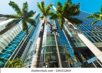 Palm trees and skyscrapers in downtown Miami. Southern Florida, USA