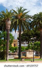 Palm trees in Spanish San Feliu de Gouxols
