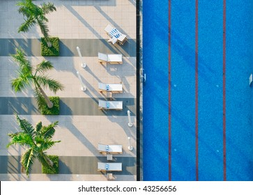 Palm trees, sun beds and swimming pool from an aerial view.