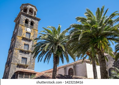 Palm trees and tower of La Concepcion church in the city of La Laguna, Tenerife, Canary Islands
