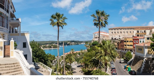 Palm trees and view of old town and port in Mahon, Menorca