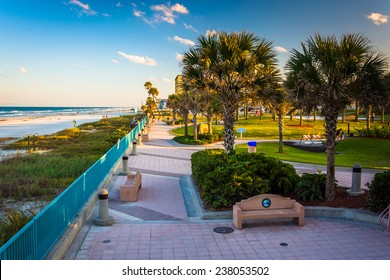 Palm trees and walkway along the beach in Daytona Beach, Florida.