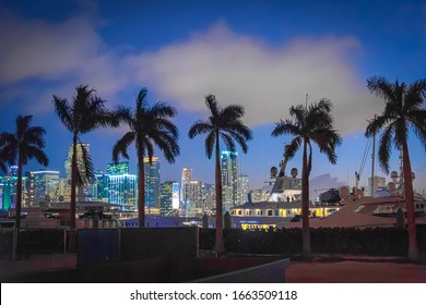 Palm trees and yachts with Downtown Miami on the background at night. Florida, USA