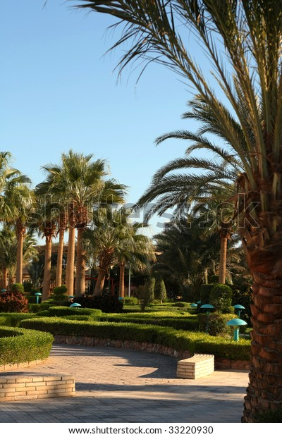 Palm Tropic Garden Hotel Egypt Stock Photo Edit Now 33220930