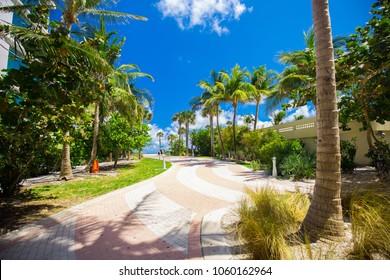 Palm walkway to beach. South Beach, Miami Beach, Florida