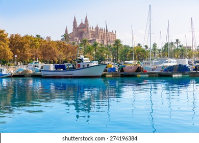 Palma de Mallorca port marina in Majorca with Cathedral church Balearic Islands