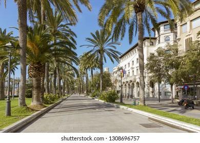 PALMA DE MALLORCA, SPAIN - FEBRUARY 9, 2019: Beautiful palm decorated promenade on Paseo Maritimo in winter sunshine on February 9, 2019 in Palma de Mallorca, Spain.