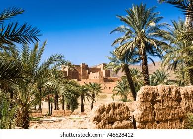 Palmeria at Kasbah Oulad Othmane at N9 between Agdz and Zagora, Morocco