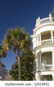 Palmetto tree with old mansion