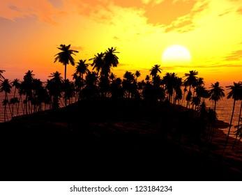 Palms on sand beach at sunset