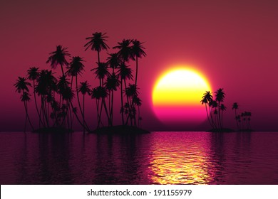 palms silhouette on coconut islands at pink sunset