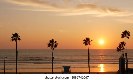 Palms silhouette sunset sky, California aesthetic. Oceanside USA. Tropical pacific ocean beach atmosphere. Dark black palm tree, Los Angeles vibes. Lifeguard watchtower, baywatch watch tower hut.