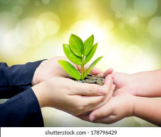 Palms with a tree growing from pile of coins supported by kid's hands /  hands giving a tree growing on coins to child's hands / csr green business / business ethics