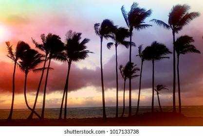 Palmtees on the beach in crazy colors