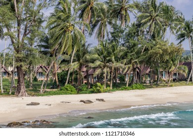 Palmtrees and a white beach in Koh Kood, Thailand 2018