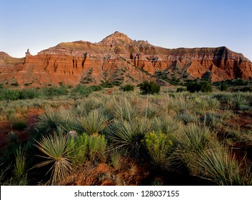 Palo Duro Canyon in the Texas panhandle near Canyon and Amarillo, Texas. The desert foliage of the canyon floor with the imposing red rocks of the canyon wall rising in the distance.