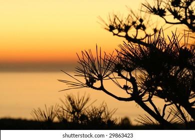 Palos Verdes sunset